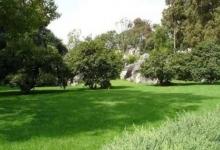 绿色生态园
