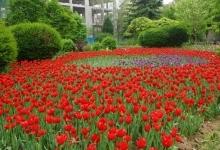 西安植物园