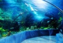 南昌海洋公园