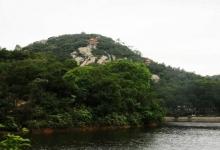 黄花山国家森林公园