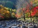 蒲石河森林公园