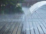 今广东降雨范围进一步扩大 广州深圳有雷雨出没注意防范